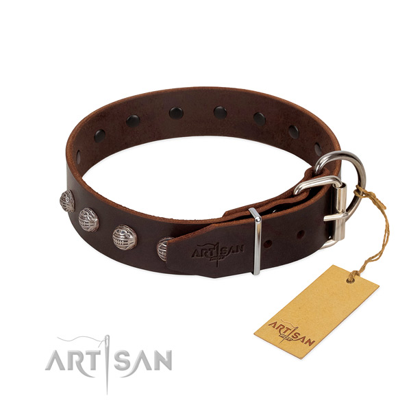 Full grain leather dog collar of reliable material with stunning studs