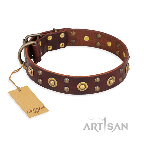 Stylish full grain natural leather dog collar with durable hardware