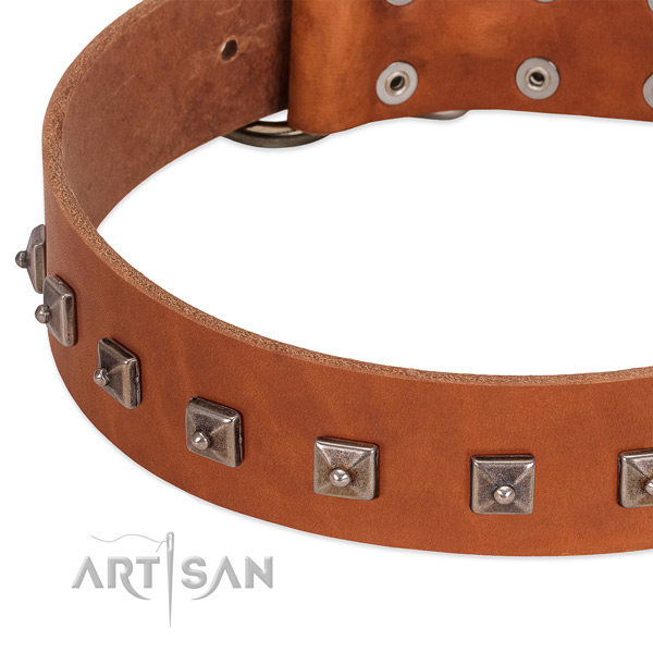 Soft full grain leather dog collar with inimitable embellishments