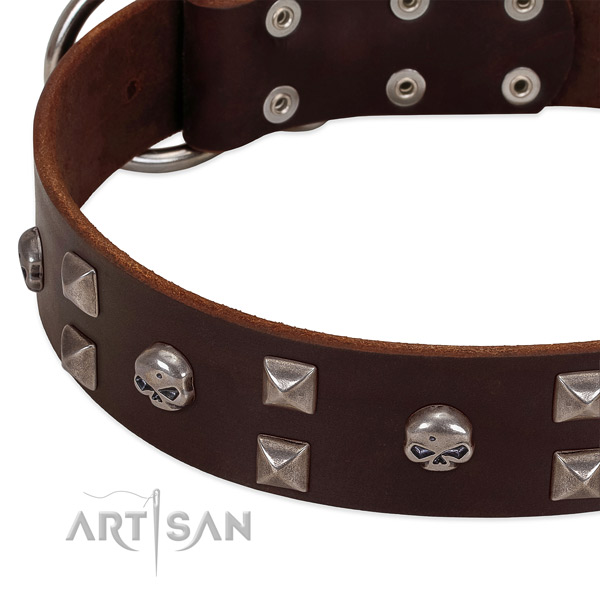 Best quality full grain natural leather dog collar crafted for your four-legged friend