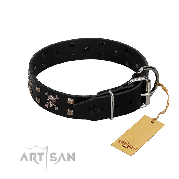 Top notch leather dog collar with corrosion resistant decorations