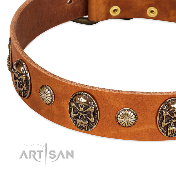 Rust resistant studs on natural genuine leather dog collar for your pet