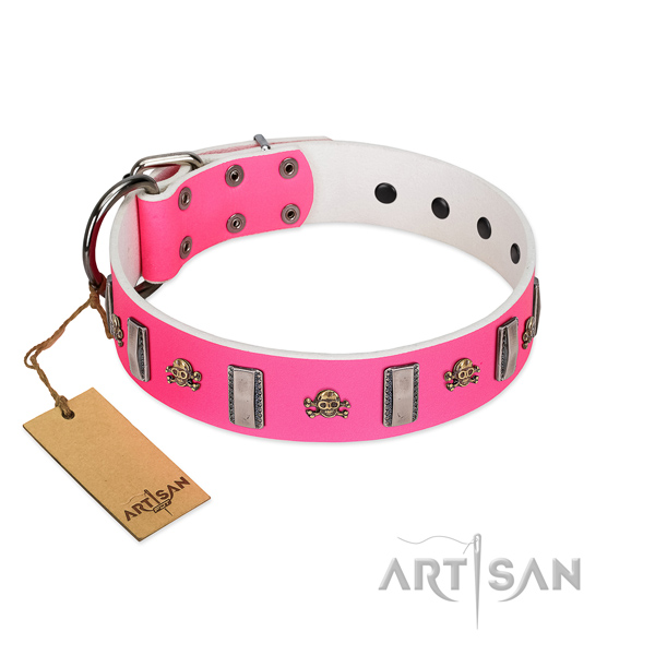 Natural leather dog collar with unusual adornments for your four-legged friend