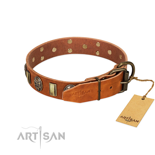 Rust-proof fittings on genuine leather collar for stylish walking your doggie