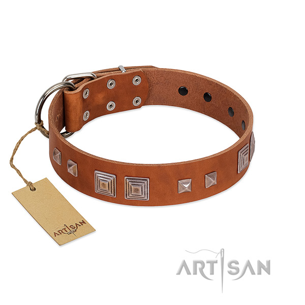 Fancy walking high quality genuine leather dog collar