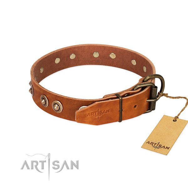 Durable traditional buckle on full grain leather dog collar for your dog
