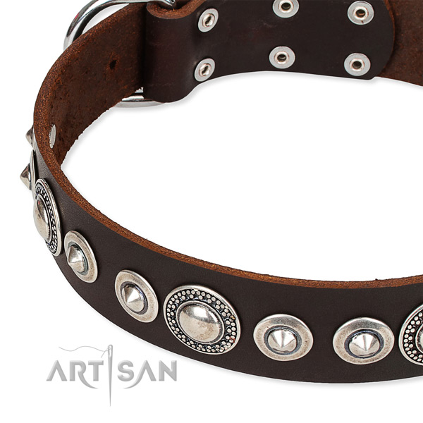 Stylish walking embellished dog collar of top notch full grain natural leather