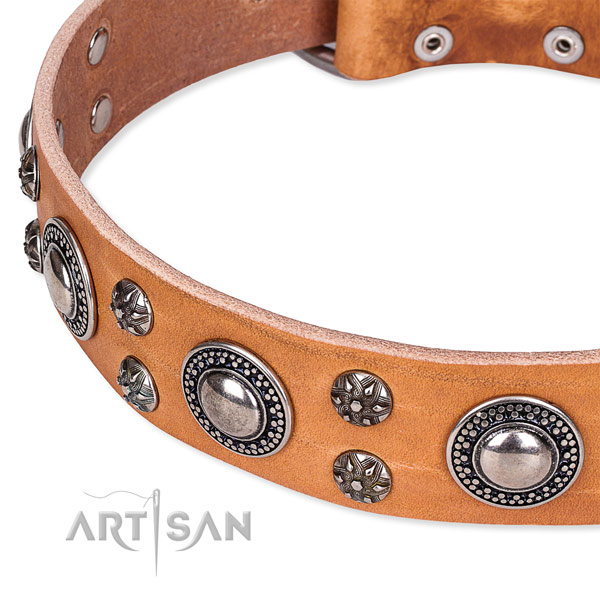 Stylish walking decorated dog collar of high quality full grain genuine leather