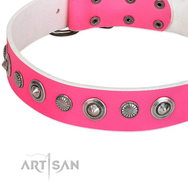 Natural leather collar with rust resistant fittings for your stylish doggie