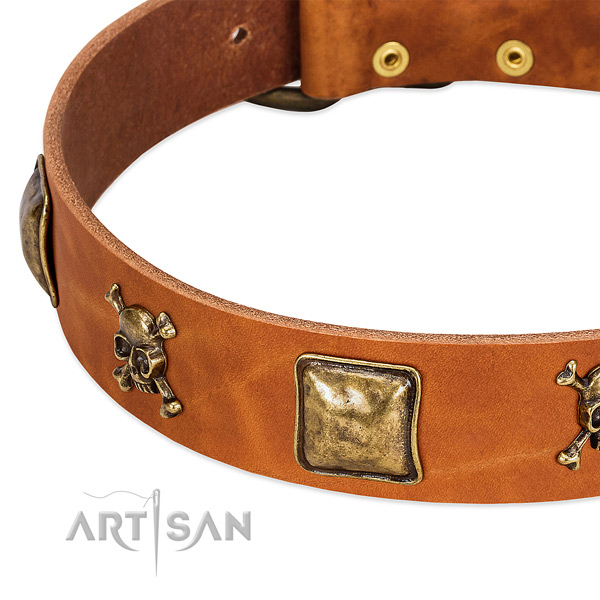 Extraordinary full grain leather dog collar with rust-proof embellishments