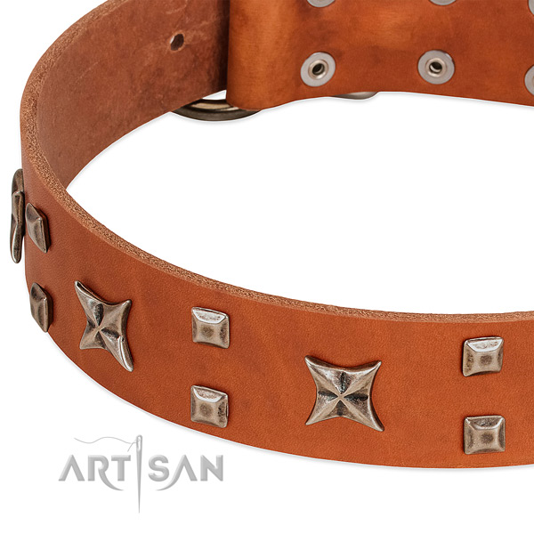 Best quality natural leather dog collar with adornments for easy wearing