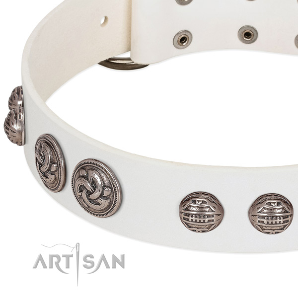 Rust-proof D-ring on full grain natural leather collar for daily walking your doggie