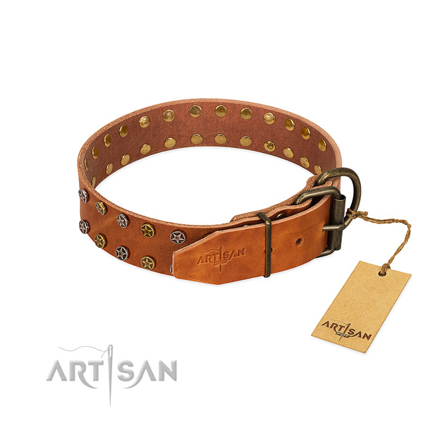 Everyday use genuine leather dog collar with stylish design embellishments