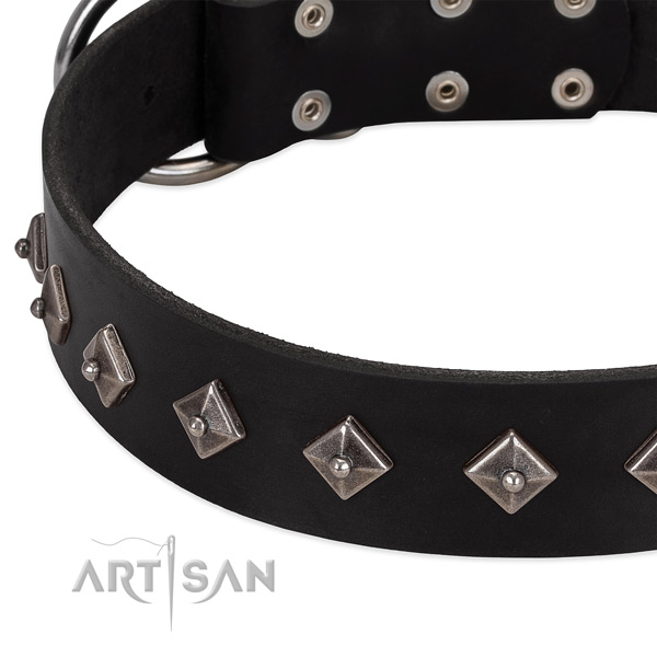 Extraordinary collar of natural leather for your handsome canine