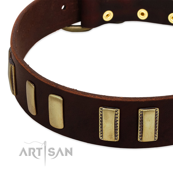 Full grain natural leather dog collar with strong fittings for fancy walking