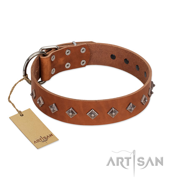 Leather dog collar with remarkable decorations made dog