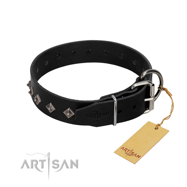Genuine leather dog collar with awesome adornments for your canine