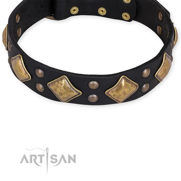 Full grain leather dog collar with exquisite reliable embellishments