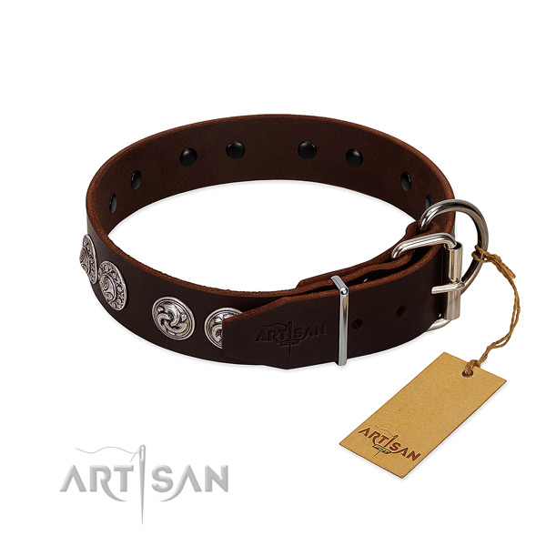 Remarkable full grain leather collar for your canine daily walking