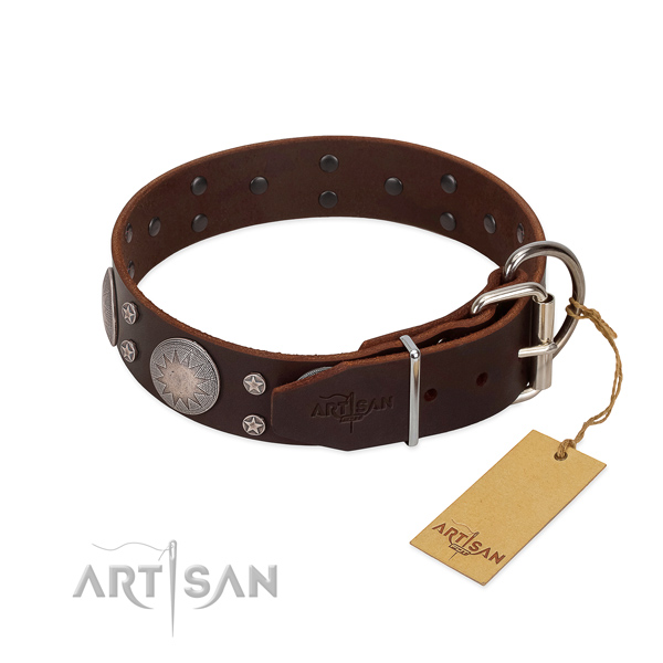 Corrosion proof D-ring on leather dog collar for handy use