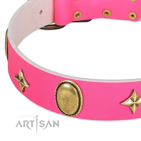 Best quality genuine leather collar with impressive embellishments for your dog