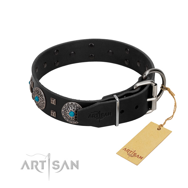Soft leather dog collar with embellishments for everyday use