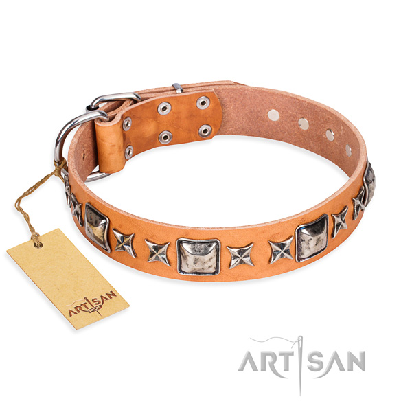 Basic training dog collar of durable genuine leather with adornments