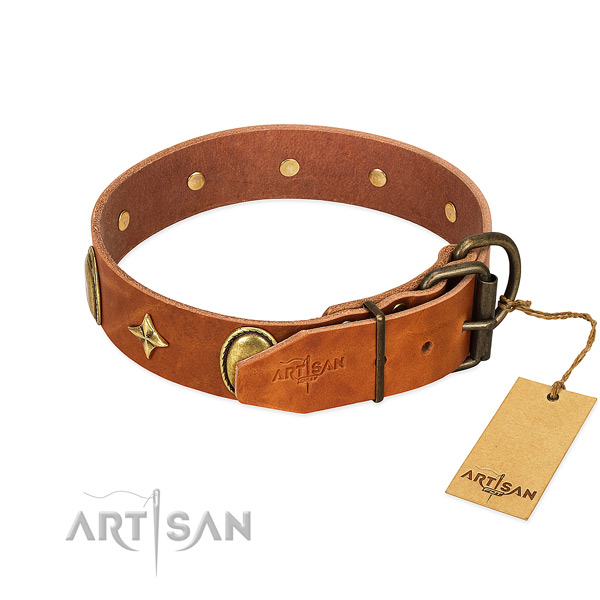 Best quality leather dog collar with significant adornments