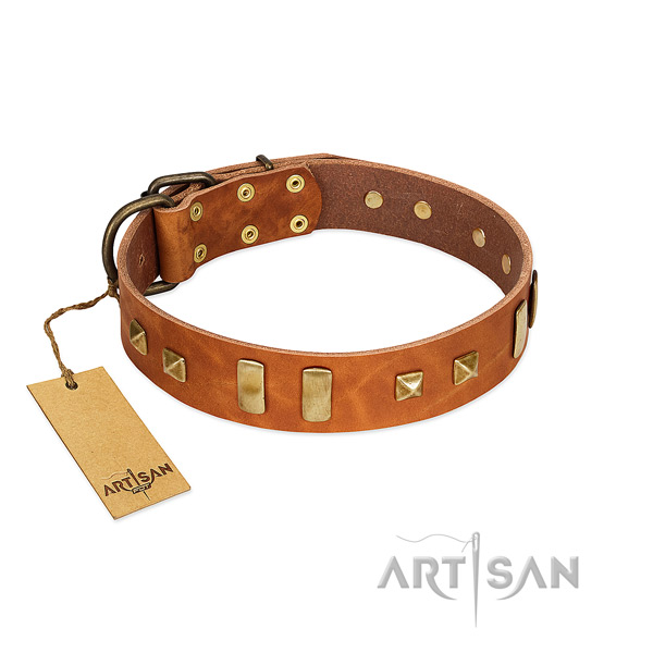 Full grain natural leather dog collar with corrosion resistant traditional buckle
