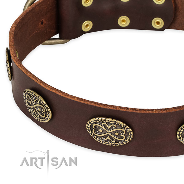 Studded full grain leather collar for your attractive doggie