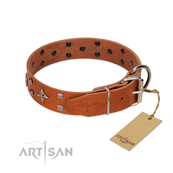 Top notch genuine leather collar for your pet walking
