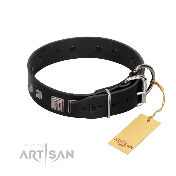 Daily walking natural leather dog collar with remarkable adornments