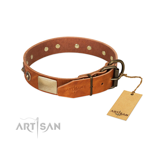 Rust resistant buckle on handy use dog collar