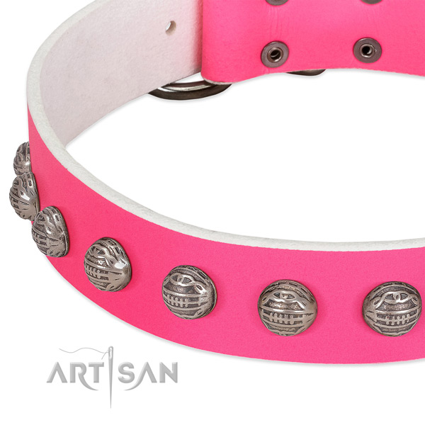 Daily walking full grain leather dog collar with awesome decorations
