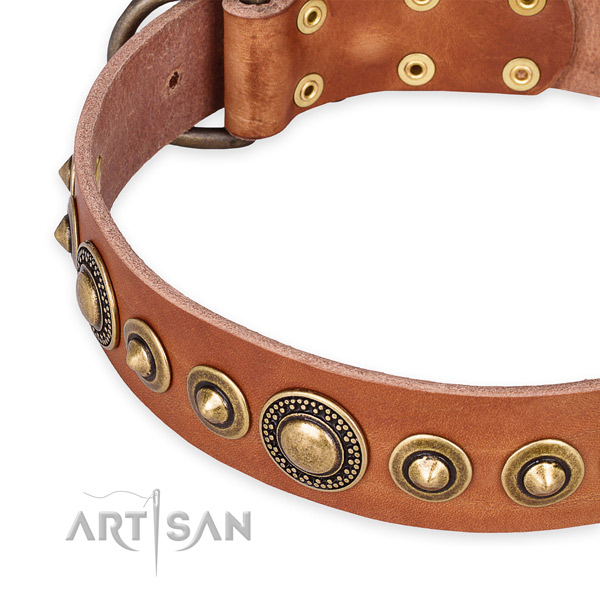 Top rate leather dog collar created for your impressive doggie