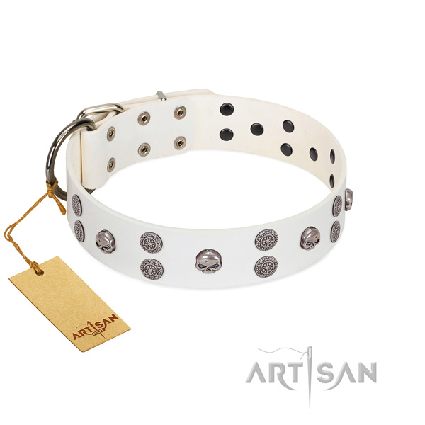 Stylish walking adorned genuine leather collar for your doggie
