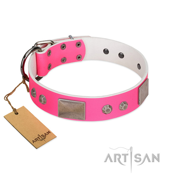 Corrosion proof hardware on genuine leather dog collar for daily walking
