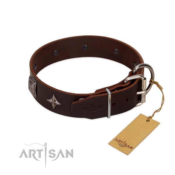 Soft full grain leather dog collar with remarkable studs