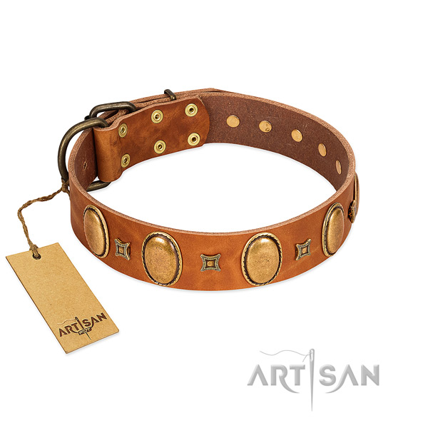 Genuine leather dog collar with trendy adornments for easy wearing