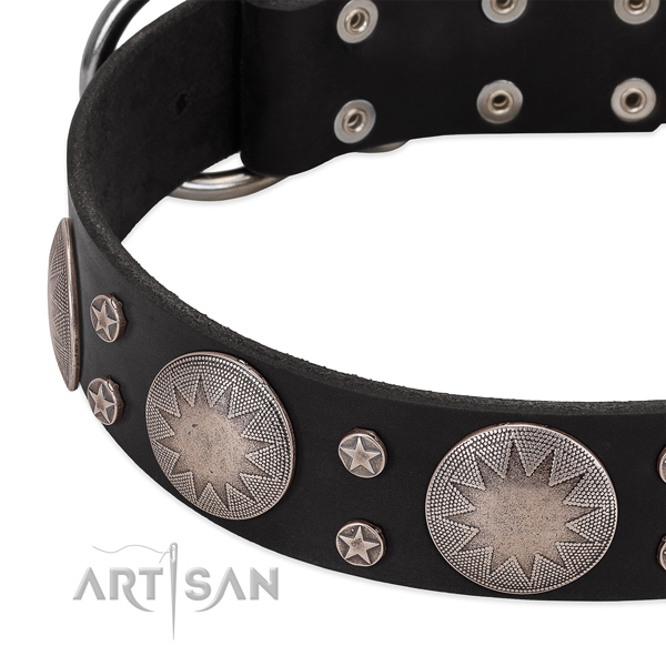 Top notch natural leather dog collar with decorations for your attractive four-legged friend