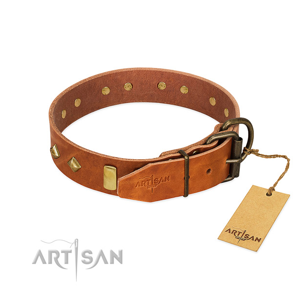 Everyday use full grain leather dog collar with trendy adornments