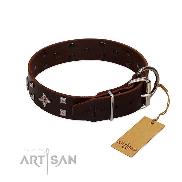 Remarkable leather collar for your pet walking