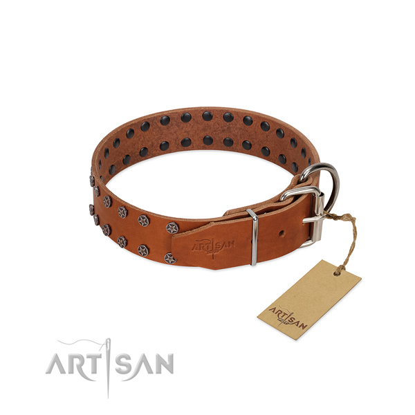 Gentle to touch full grain natural leather dog collar with decorations for your dog