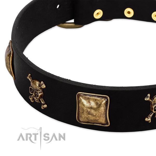 Gentle to touch natural leather dog collar with top notch decorations