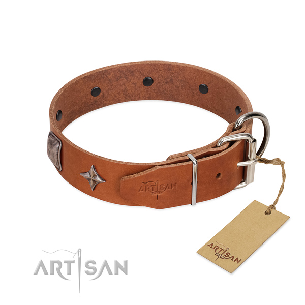 Soft to touch genuine leather dog collar with exquisite studs