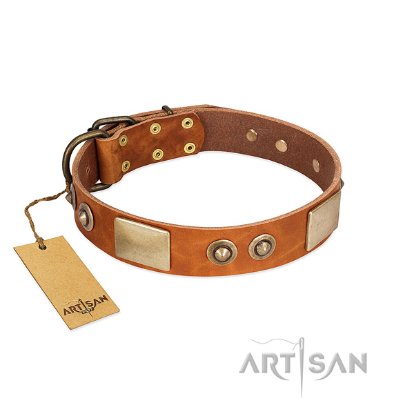 Easy to adjust full grain leather dog collar for daily walking your dog