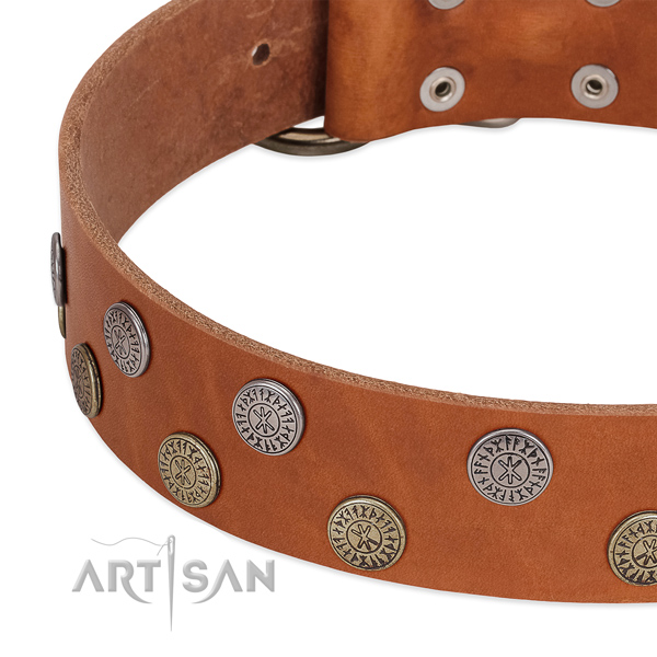 Top notch genuine leather collar for stylish walking your pet