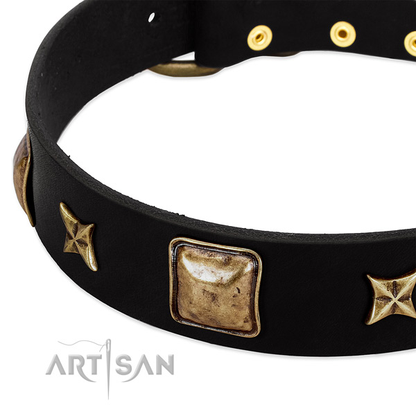 Full grain leather dog collar with fashionable adornments