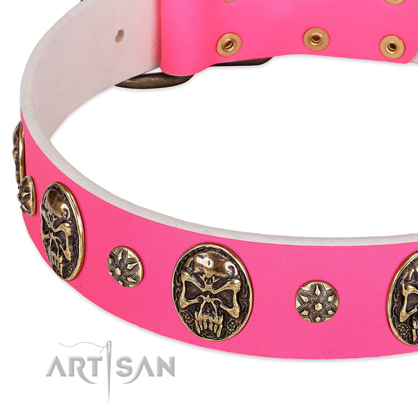 Incredible dog collar handmade for your beautiful doggie