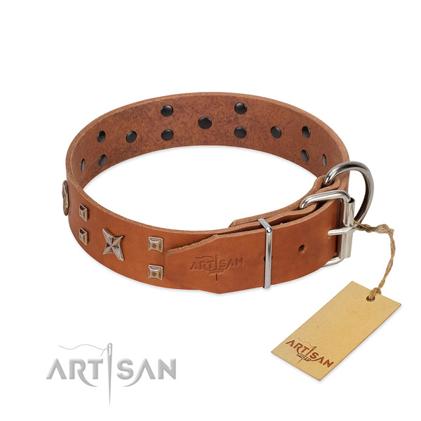 Genuine leather dog collar with studs for your beautiful pet